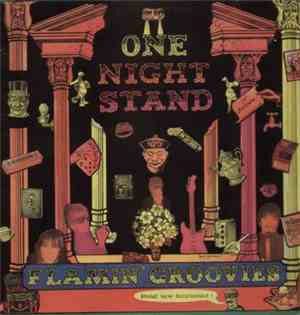 The Flamin' Groovies - One Night Stand